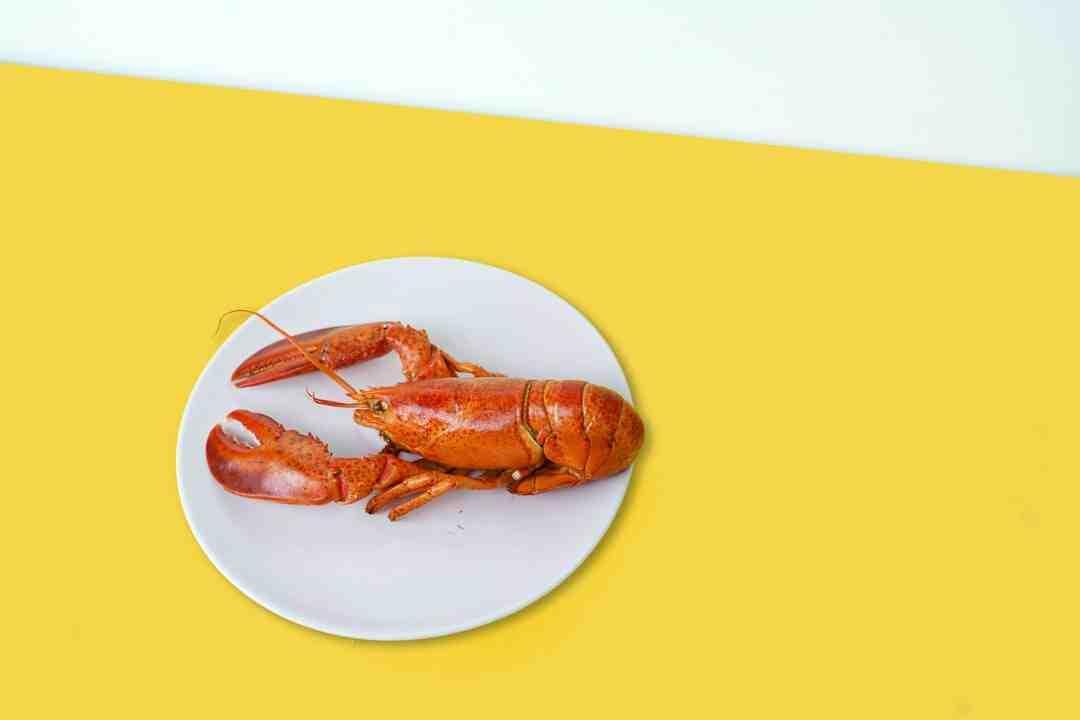 Comment faire cuire du homard