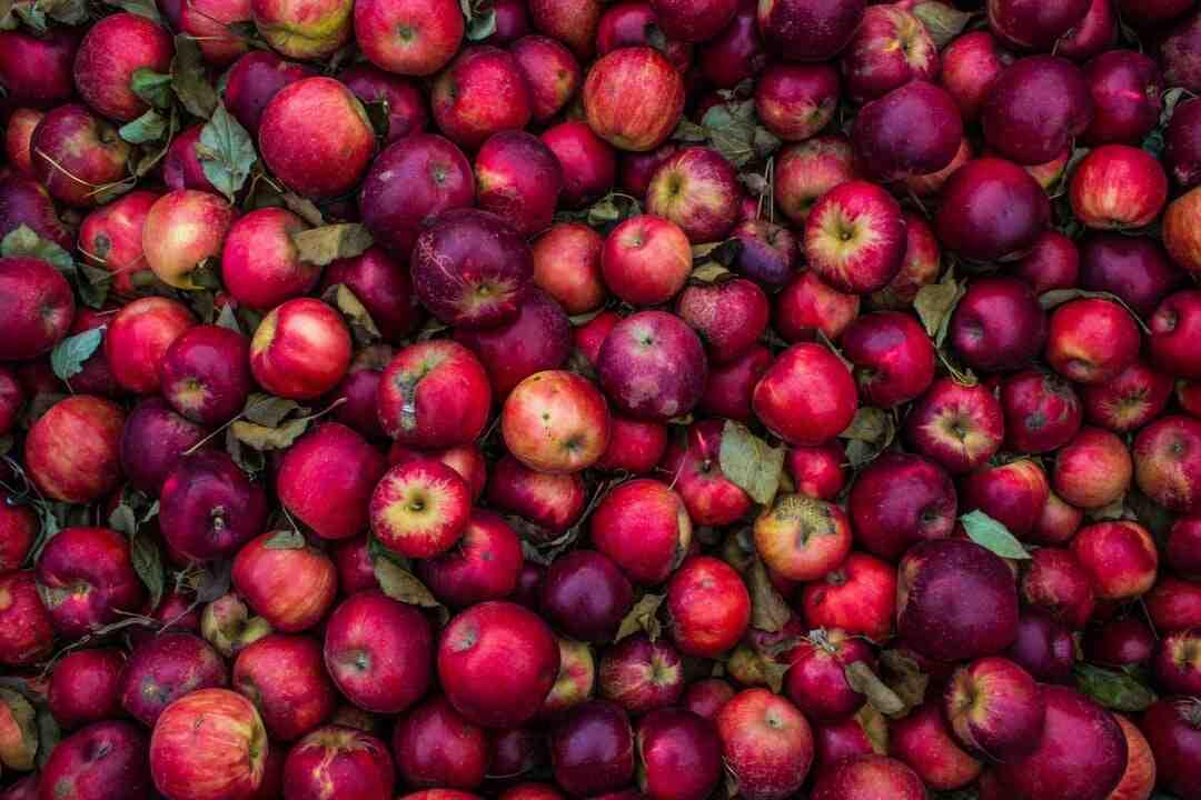 Comment conserver des pommes
