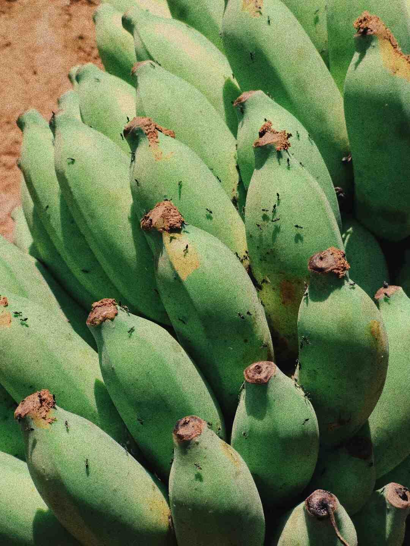 Comment faire frire des bananes plantain